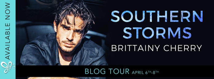 Southern Storm - BT banner